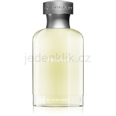 Burberry Weekend for Men 100 ml toaletní voda