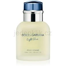 Dolce & Gabbana Light Blue Pour Homme 40 ml toaletní voda pro muže toaletní voda