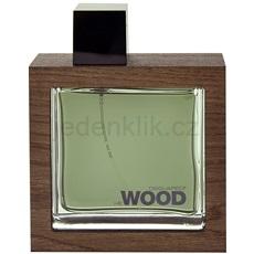Dsquared2 He Wood Rocky Mountain 100 ml toaletní voda pro muže toaletní voda