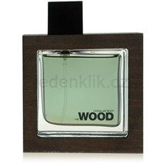 Dsquared2 He Wood Rocky Mountain 50 ml toaletní voda