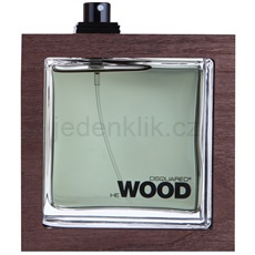 Dsquared2 He Wood Rocky Mountain tester 100 ml toaletní voda