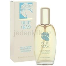 Elizabeth Arden Blue Grass Blue Grass 100 ml parfémovaná voda pro ženy parfémovaná voda